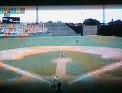 Griffith Stadium Damn Yanks