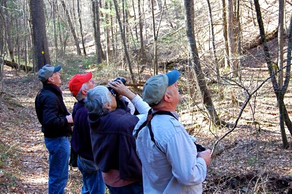 Augusta Birders at Chimney Hollow